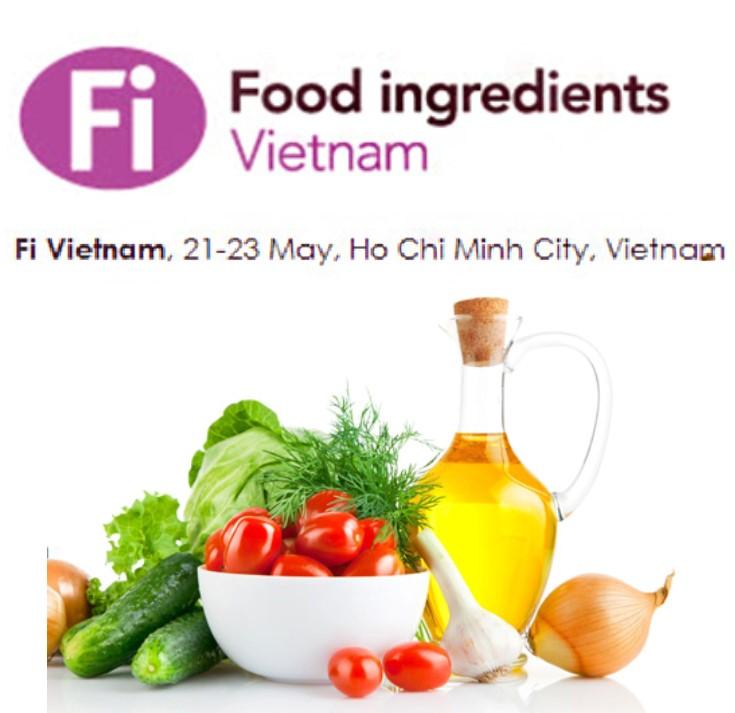 FI vietnam 2015 feature image