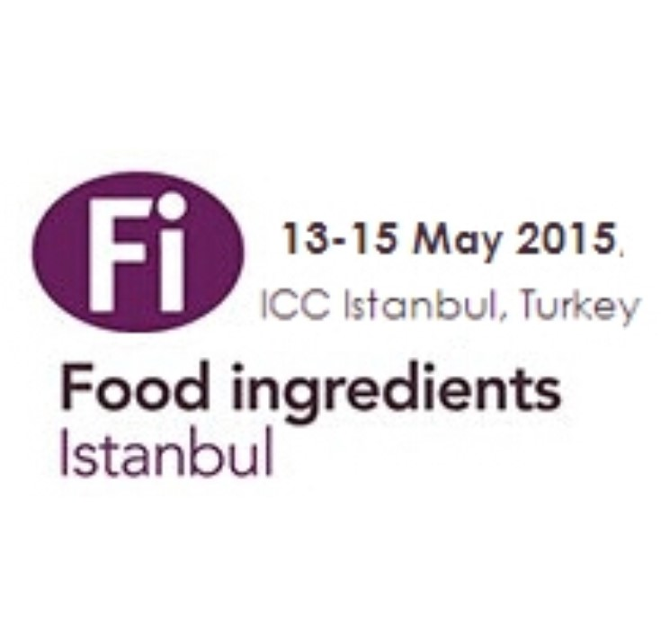 FI Istanbul 2015 feature image