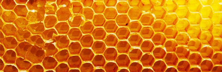 First Spanish Honey Exporter is Kosher Certified by KLBD
