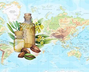 Essential Oils Around the World