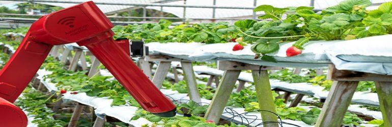 Latest Developments in Food Technology