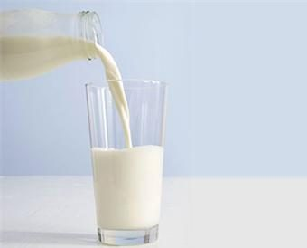 KLBD ASSISTS FRESH KOSHER MILK IN CHINA